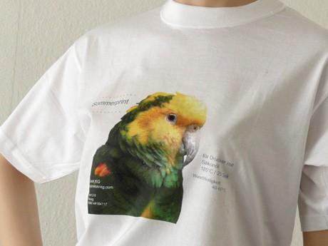 1 Wachstoner Blatt Grzybowski Somerprint Shirtfolie A3 Digital KgT Für nm80wvNO
